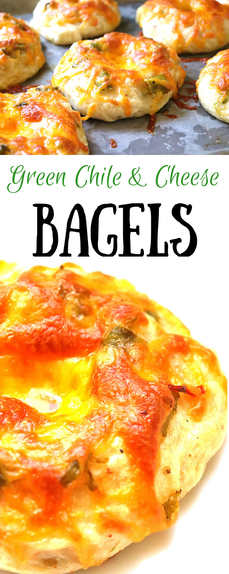 Green Chile Cheese Bagels | New Mexican Foodie